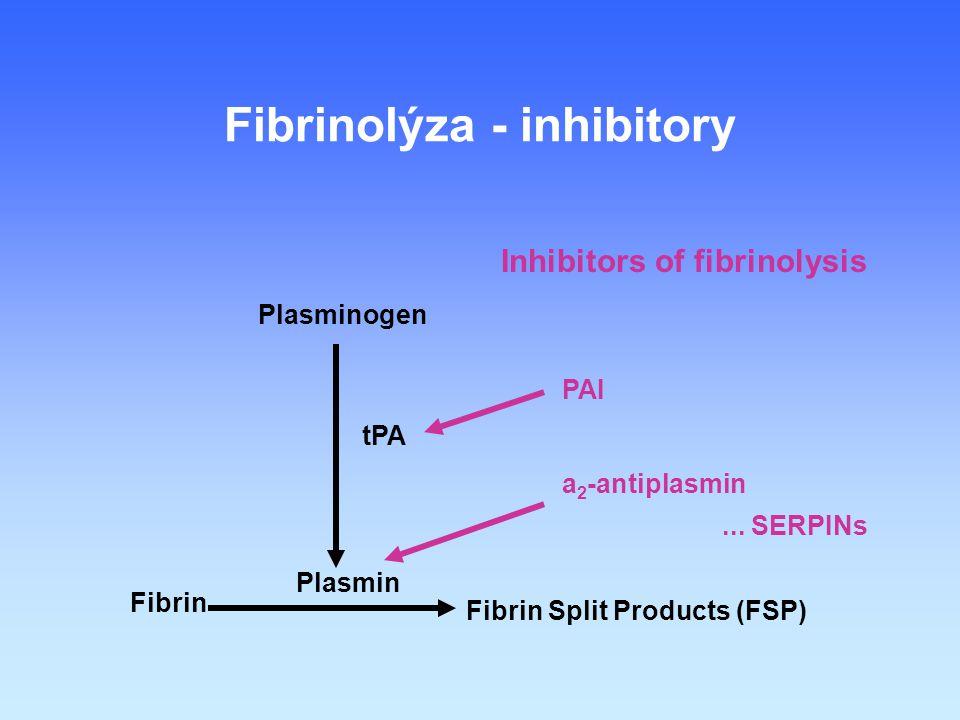 Fibrin Fibrin Split Products (FSP) Plasmin Plasminogen tPA Fibrinolýza - inhibitory Inhibitors of fibrinolysis PAI a 2 -antiplasmin...
