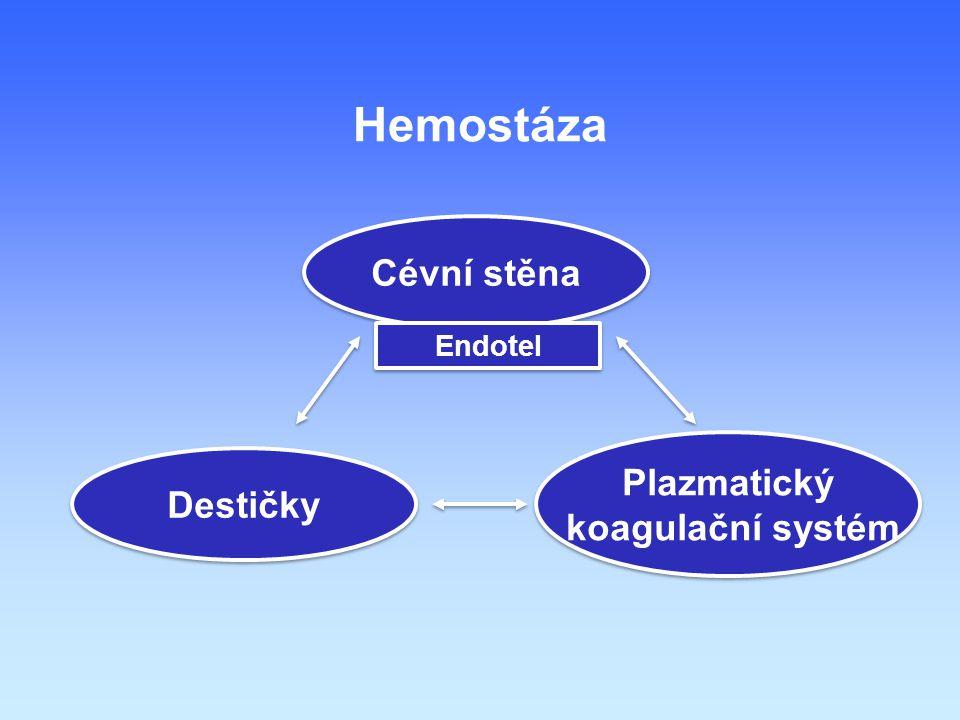 Plazmatický koagulační systém Plazmatický koagulační systém Cévní stěna Destičky Endotel