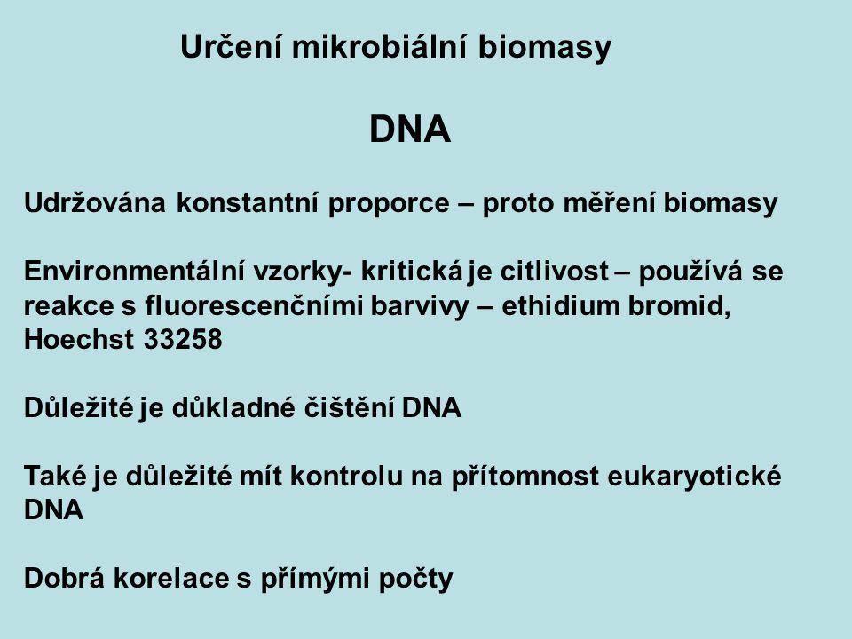 Určení mikrobiální biomasy DNA Udržována konstantní proporce – proto měření biomasy Environmentální vzorky- kritická je citlivost – používá se reakce