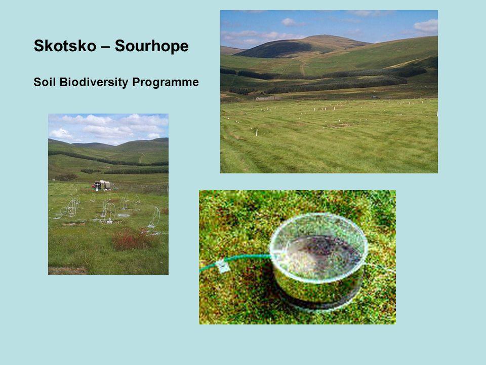 Skotsko – Sourhope Soil Biodiversity Programme