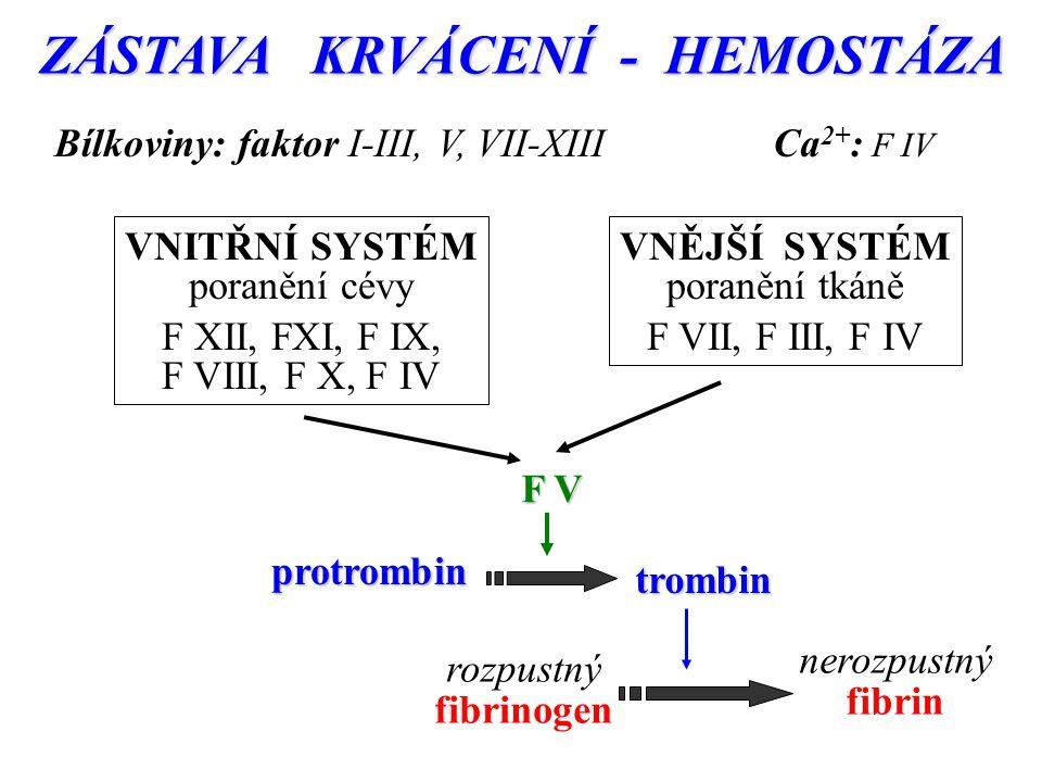 ZÁSTAVA KRVÁCENÍ - HEMOSTÁZA rozpustný fibrinogen nerozpustný fibrin VNITŘNÍ SYSTÉM poranění cévy F XII, FXI, F IX, F VIII, F X, F IV VNĚJŠÍ SYSTÉM poranění tkáně F VII, F III, F IV protrombin trombin F V Bílkoviny: faktor I-III, V, VII-XIIICa 2+ : F IV