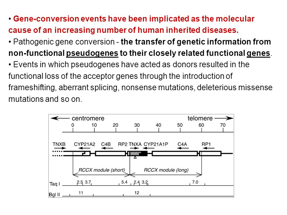 Gene-conversion events have been implicated as the molecular cause of an increasing number of human inherited diseases.