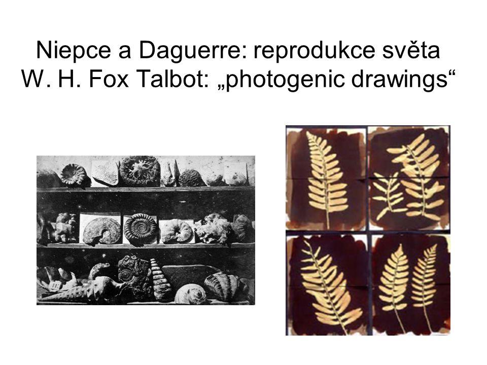 "Niepce a Daguerre: reprodukce světa W. H. Fox Talbot: ""photogenic drawings"""