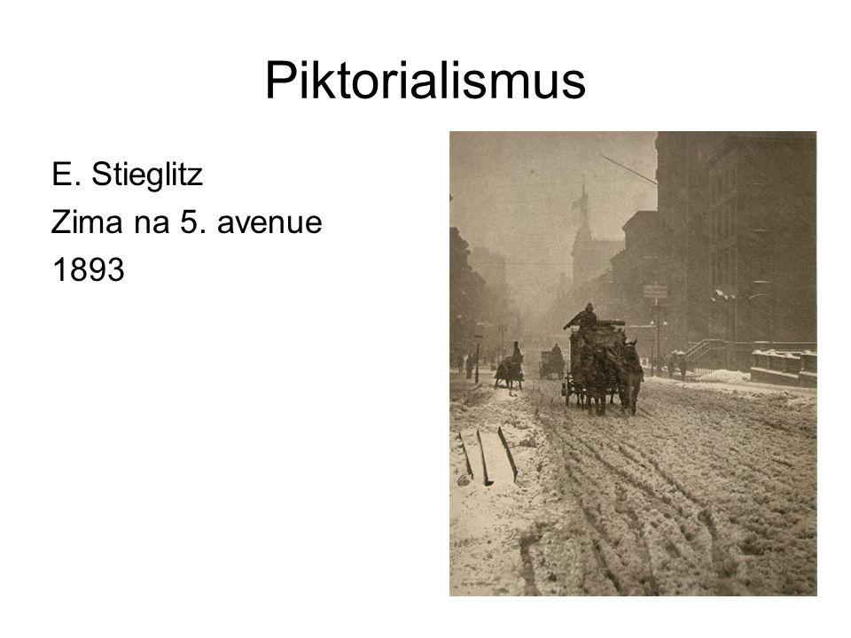 Piktorialismus E. Stieglitz Zima na 5. avenue 1893