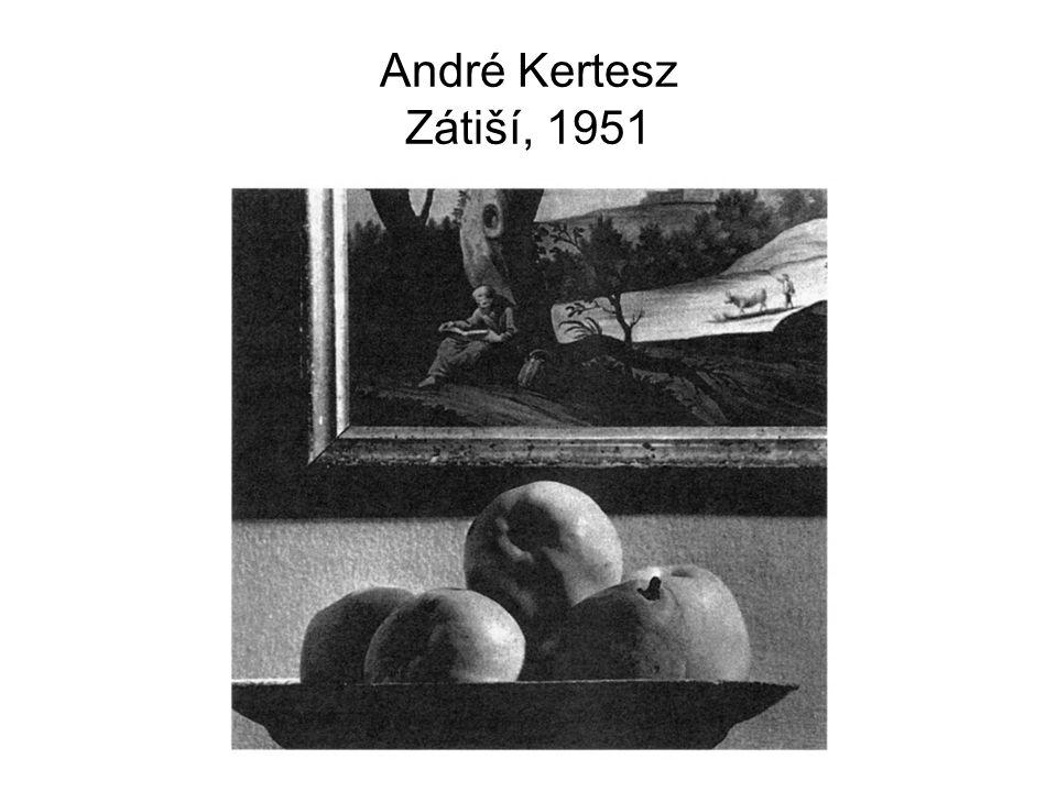 André Kertesz Zátiší, 1951