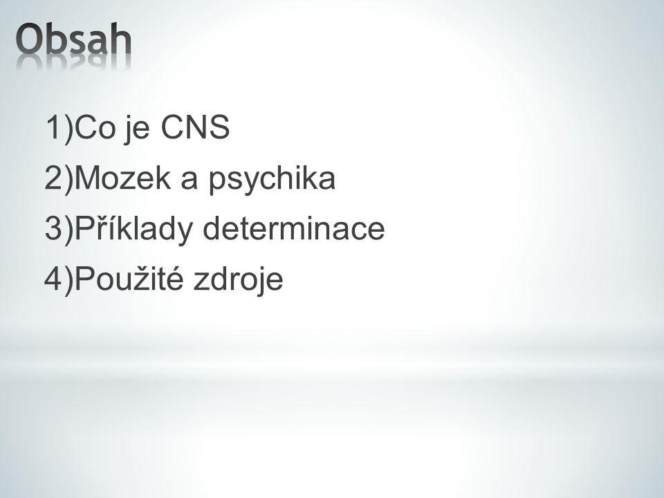 1)Co je CNS 2)Mozek a psychika 3)Příklady determinace 4)Použité zdroje