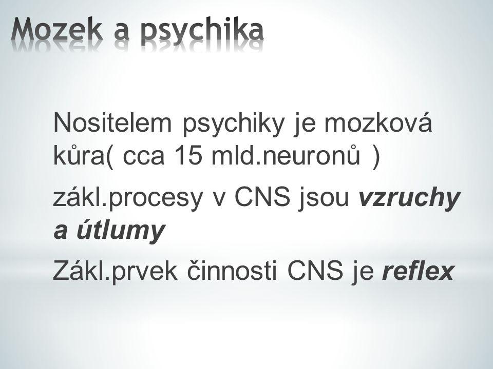 Nositelem psychiky je mozková kůra( cca 15 mld.neuronů ) zákl.procesy v CNS jsou vzruchy a útlumy Zákl.prvek činnosti CNS je reflex