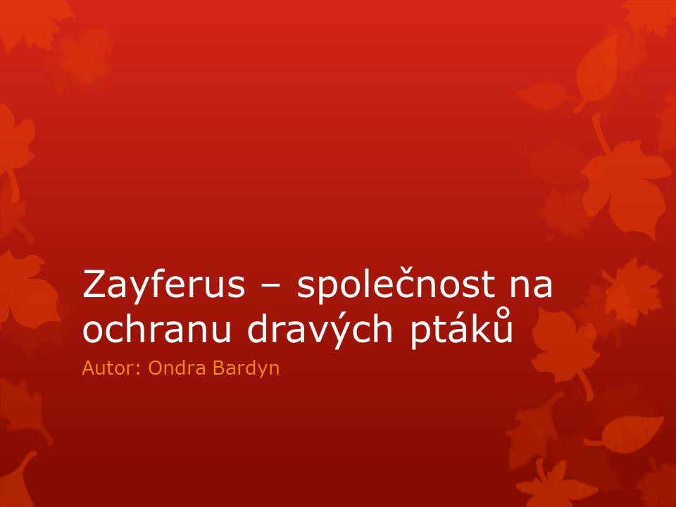 Zayferus – společnost na ochranu dravých ptáků Autor: Ondra Bardyn