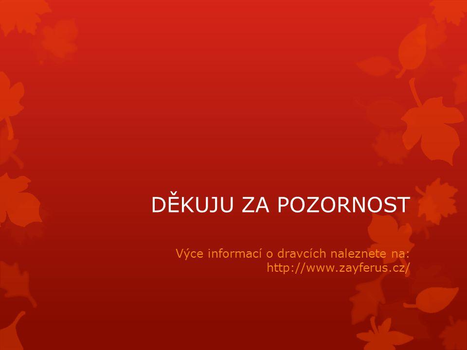 DĚKUJU ZA POZORNOST Výce informací o dravcích naleznete na: http://www.zayferus.cz/