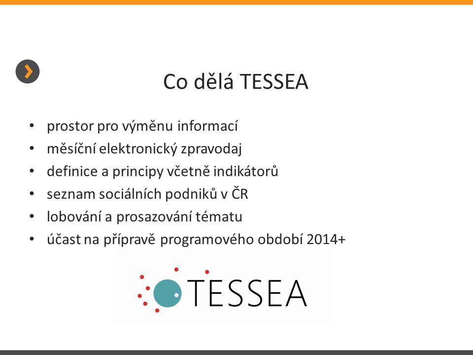 Co dělá TESSEA prostor pro výměnu informací měsíční elektronický zpravodaj definice a principy včetně indikátorů seznam sociálních podniků v ČR lobování a prosazování tématu účast na přípravě programového období 2014+