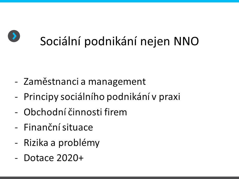 Sociální podnikání nejen NNO -Zaměstnanci a management -Principy sociálního podnikání v praxi -Obchodní činnosti firem -Finanční situace -Rizika a problémy -Dotace 2020+