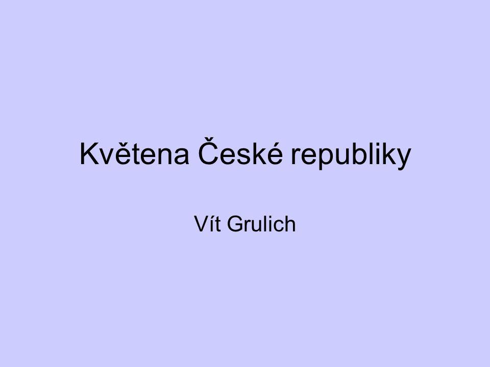 Květena České republiky Vít Grulich