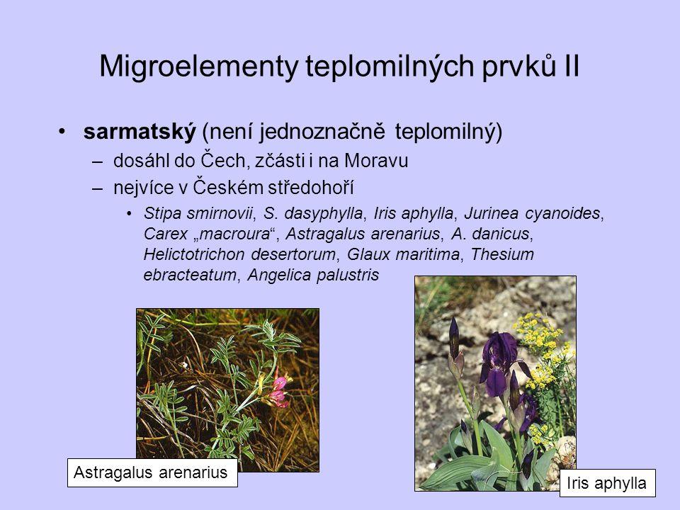 Migroelementy teplomilných prvků II sarmatský (není jednoznačně teplomilný) –dosáhl do Čech, zčásti i na Moravu –nejvíce v Českém středohoří Stipa smi