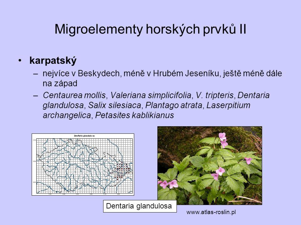 Migroelementy horských prvků II karpatský –nejvíce v Beskydech, méně v Hrubém Jeseníku, ještě méně dále na západ –Centaurea mollis, Valeriana simplici