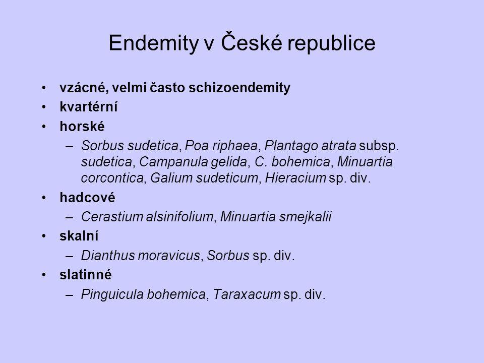 Endemity v České republice vzácné, velmi často schizoendemity kvartérní horské –Sorbus sudetica, Poa riphaea, Plantago atrata subsp. sudetica, Campanu