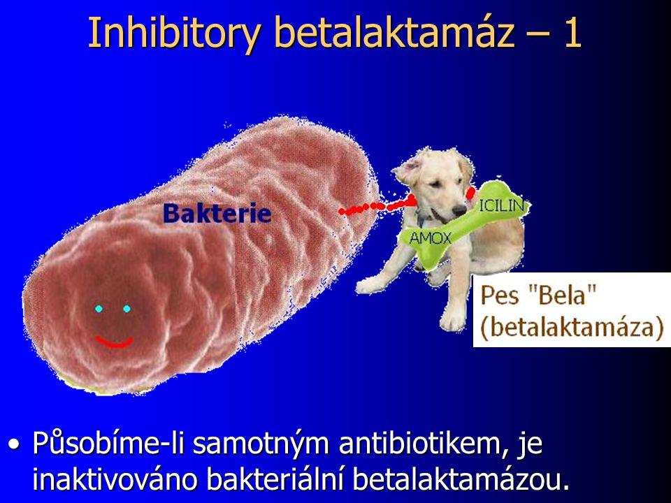 Inhibitory betalaktamáz – 1 Působíme-li samotným antibiotikem, je inaktivováno bakteriální betalaktamázou.Působíme-li samotným antibiotikem, je inakti