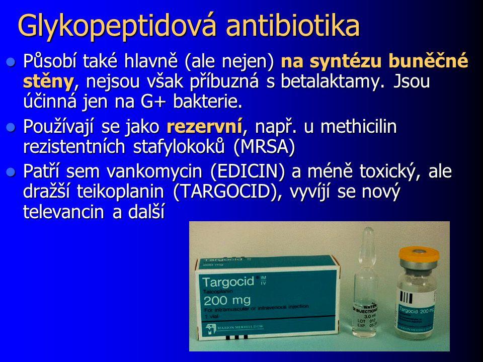 Glykopeptidová antibiotika Působí také hlavně (ale nejen) na syntézu buněčné stěny, nejsou však příbuzná s betalaktamy. Jsou účinná jen na G+ bakterie