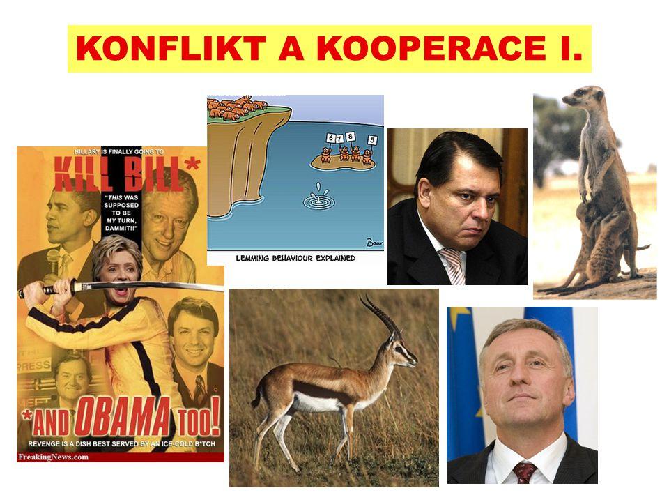 KONFLIKT A KOOPERACE I.