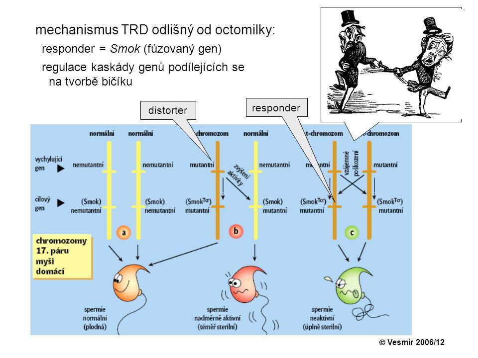 mechanismus TRD odlišný od octomilky: responder = Smok (fúzovaný gen) regulace kaskády genů podílejících se na tvorbě bičíku  Vesmír 2006/12 distorte