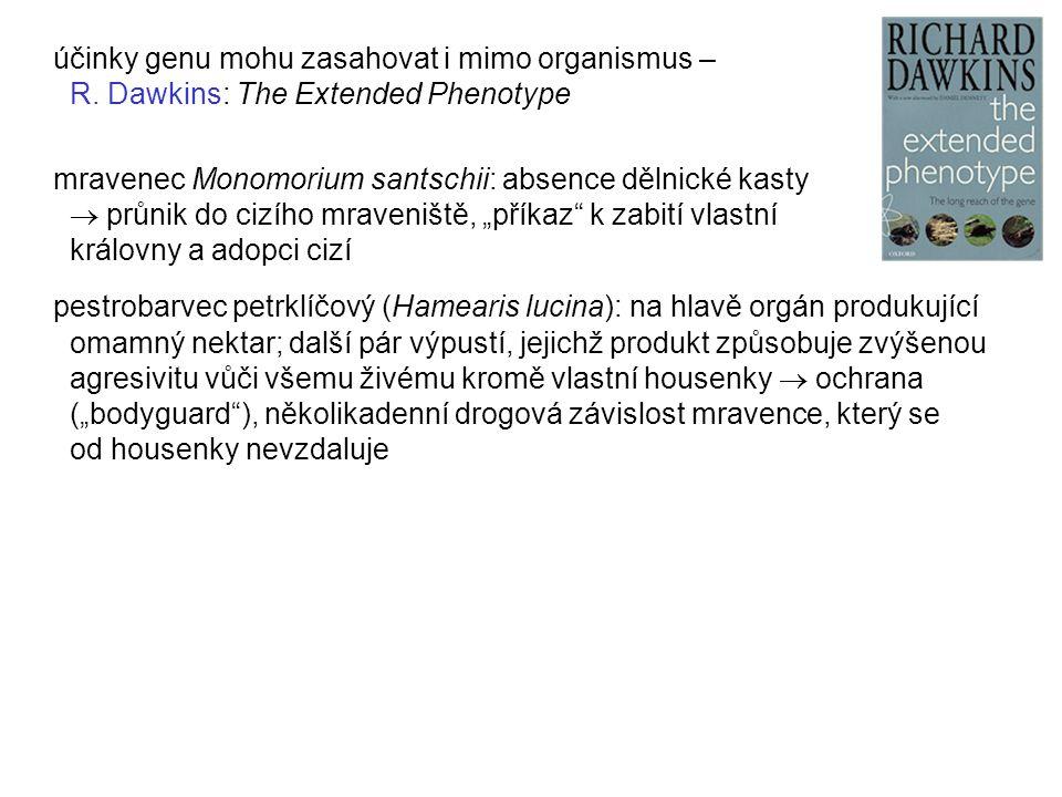 účinky genu mohu zasahovat i mimo organismus – R. Dawkins: The Extended Phenotype mravenec Monomorium santschii: absence dělnické kasty  průnik do ci