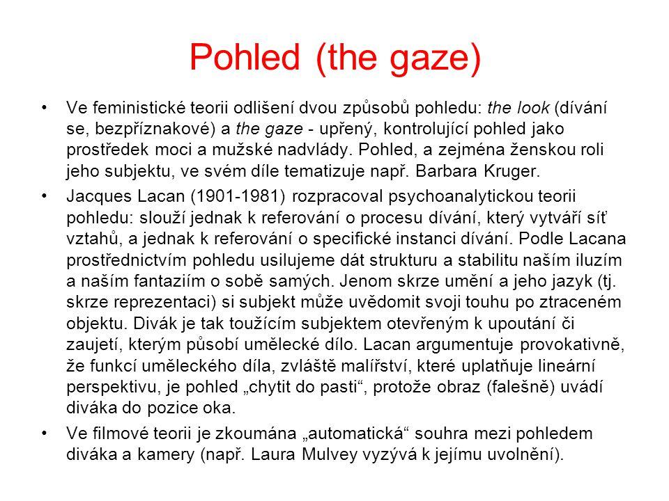 Pohled (the gaze) Ve feministické teorii odlišení dvou způsobů pohledu: the look (dívání se, bezpříznakové) a the gaze - upřený, kontrolující pohled jako prostředek moci a mužské nadvlády.