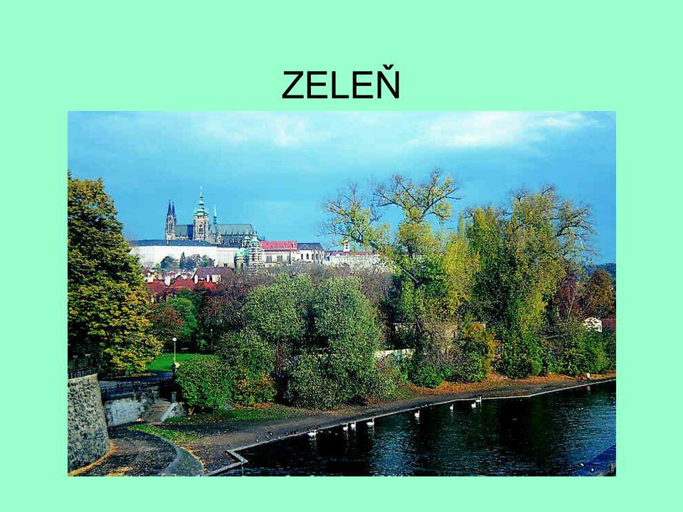 Rozlišuje 12 druhů zeleně: parky sadovnicky upravené plochy zeleň sídlištní hřbitovy a urnové háje botanické a zoologické zahrady arboreta zeleň v individuální zástavbě zahrádkářské a chatové osady lesy stromořadí zeleň rozptýlená zeleň hospodářská jiná zeleň