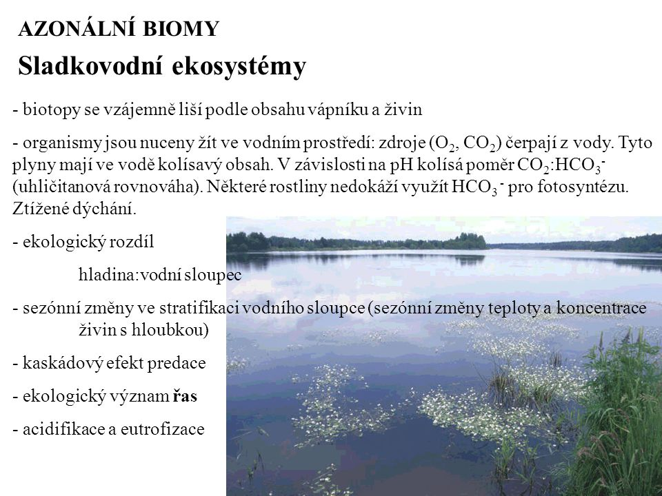 AZONÁLNÍ BIOMY Sladkovodní ekosystémy - biotopy se vzájemně liší podle obsahu vápníku a živin - organismy jsou nuceny žít ve vodním prostředí: zdroje (O 2, CO 2 ) čerpají z vody.