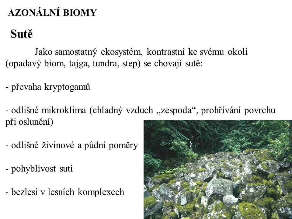 """AZONÁLNÍ BIOMY Sutě Jako samostatný ekosystém, kontrastní ke svému okolí (opadavý biom, tajga, tundra, step) se chovají sutě: - převaha kryptogamů - odlišné mikroklima (chladný vzduch """"zespoda , prohřívání povrchu při oslunění) - odlišné živinové a půdní poměry - pohyblivost sutí - bezlesí v lesních komplexech"""