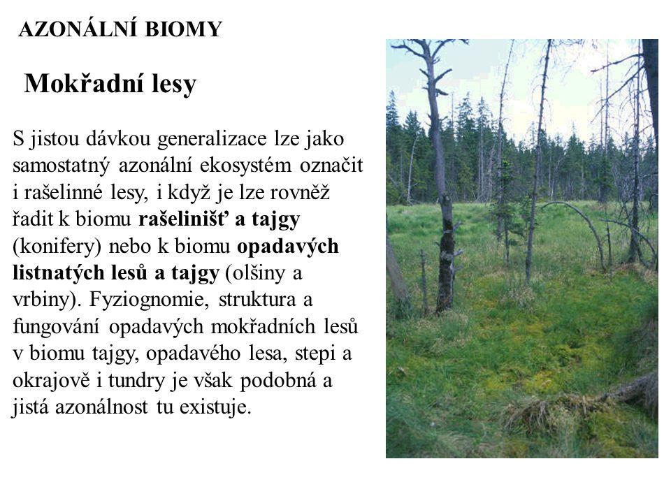 AZONÁLNÍ BIOMY Mokřadní lesy S jistou dávkou generalizace lze jako samostatný azonální ekosystém označit i rašelinné lesy, i když je lze rovněž řadit k biomu rašelinišť a tajgy (konifery) nebo k biomu opadavých listnatých lesů a tajgy (olšiny a vrbiny).