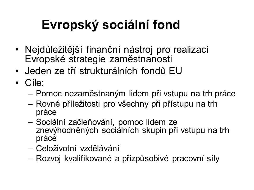 Evropský sociální fond Nejdůležitější finanční nástroj pro realizaci Evropské strategie zaměstnanosti Jeden ze tří strukturálních fondů EU Cíle: –Pomoc nezaměstnaným lidem při vstupu na trh práce –Rovné příležitosti pro všechny při přístupu na trh práce –Sociální začleňování, pomoc lidem ze znevýhodněných sociálních skupin při vstupu na trh práce –Celoživotní vzdělávání –Rozvoj kvalifikované a přizpůsobivé pracovní síly
