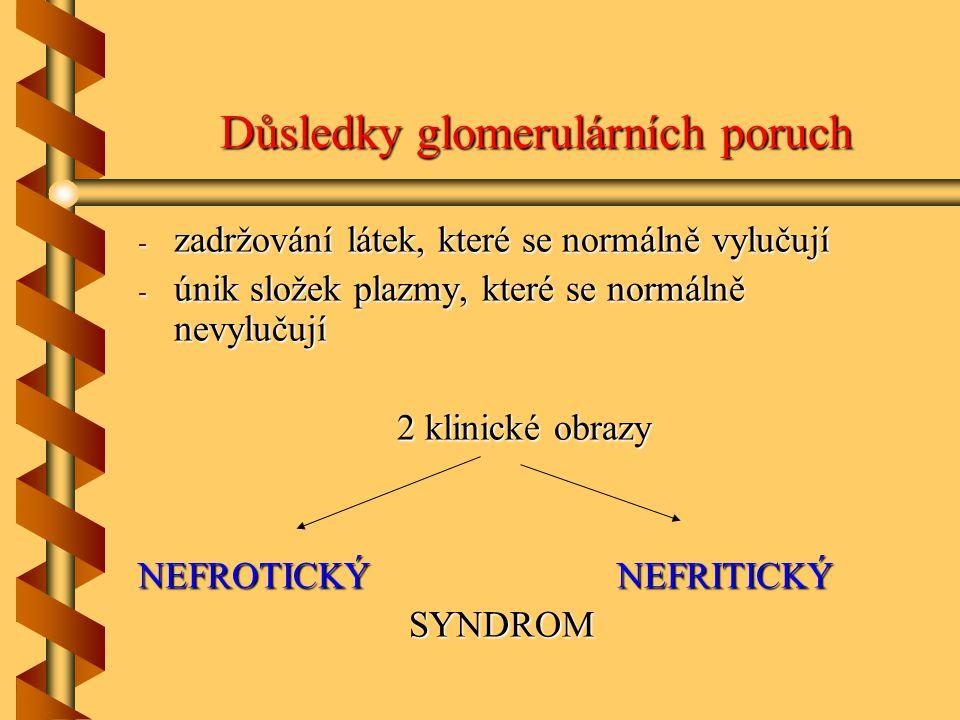 Důsledky glomerulárních poruch - zadržování látek, které se normálně vylučují - únik složek plazmy, které se normálně nevylučují 2 klinické obrazy NEFROTICKÝ NEFRITICKÝ SYNDROM SYNDROM