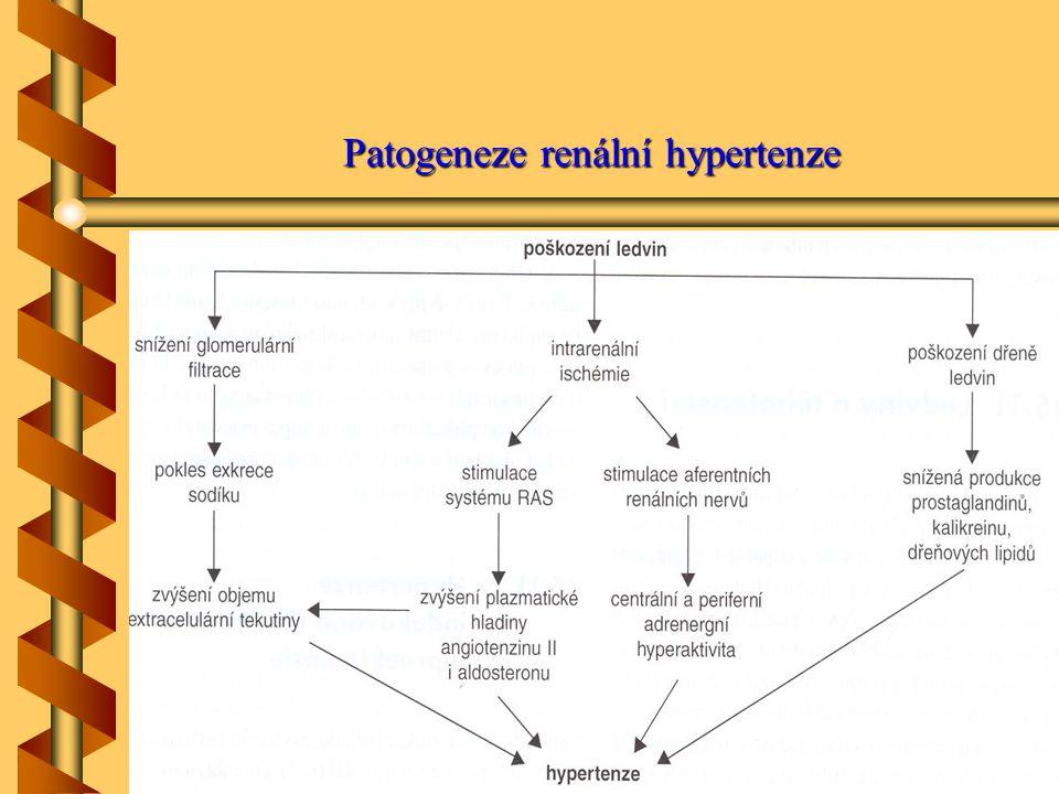 Patogeneze renální hypertenze