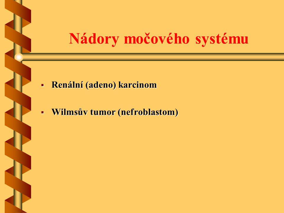 Nádory močového systému  Renální (adeno) karcinom  Wilmsův tumor (nefroblastom)