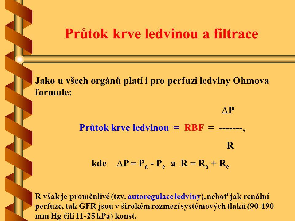 Průtok krve ledvinou a filtrace Jako u všech orgánů platí i pro perfuzi ledviny Ohmova formule:  P Průtok krve ledvinou = RBF = -------, R kde  P =