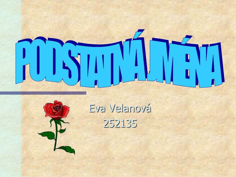 Eva Velanová 252135