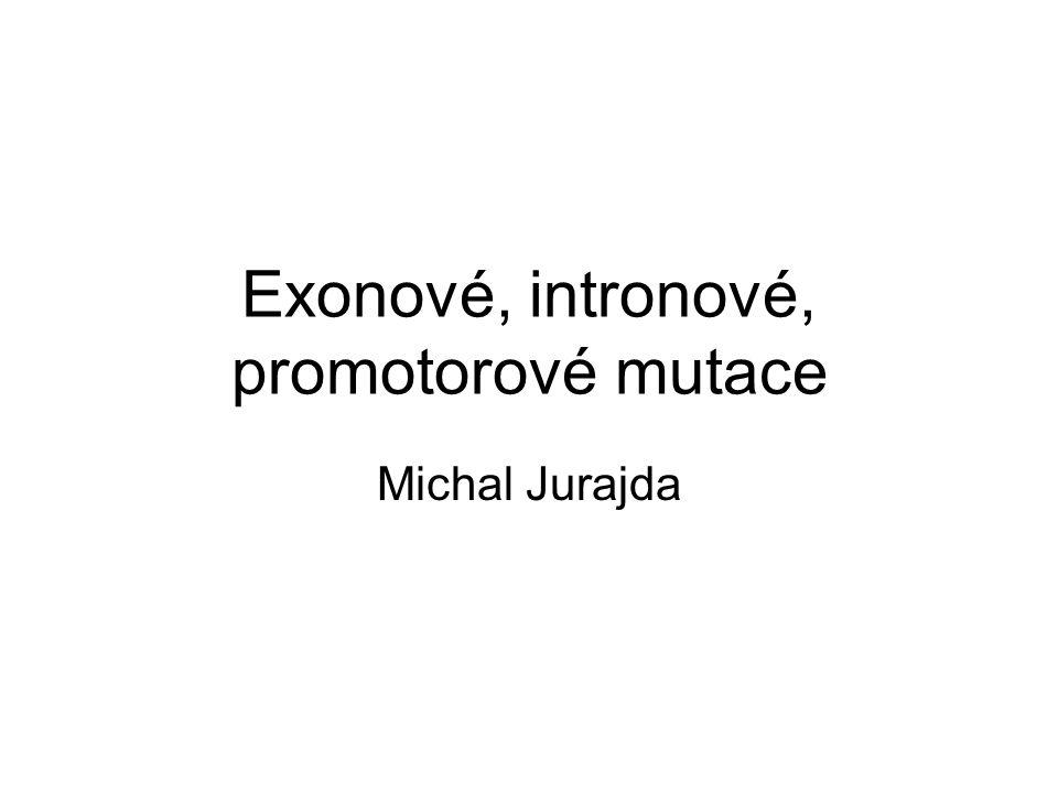 Exonové, intronové, promotorové mutace Michal Jurajda