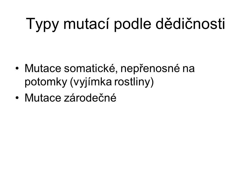 Typy mutací podle dědičnosti Mutace somatické, nepřenosné na potomky (vyjímka rostliny) Mutace zárodečné