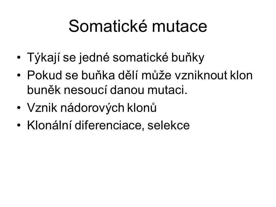 Somatické mutace Týkají se jedné somatické buňky Pokud se buňka dělí může vzniknout klon buněk nesoucí danou mutaci. Vznik nádorových klonů Klonální d