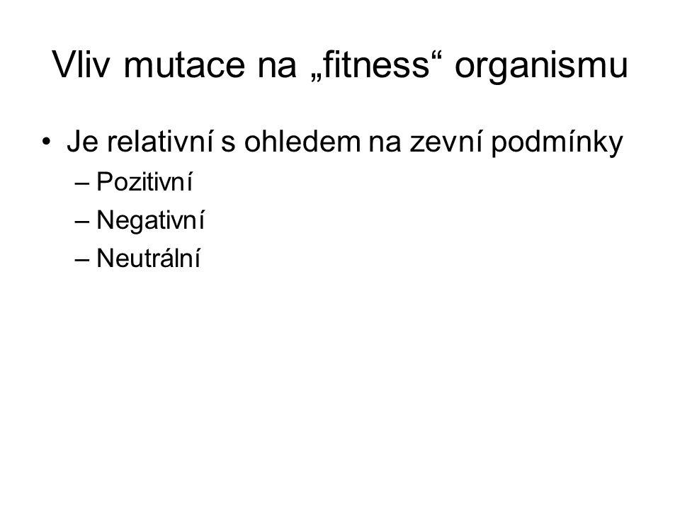 """Vliv mutace na """"fitness organismu Je relativní s ohledem na zevní podmínky –Pozitivní –Negativní –Neutrální"""