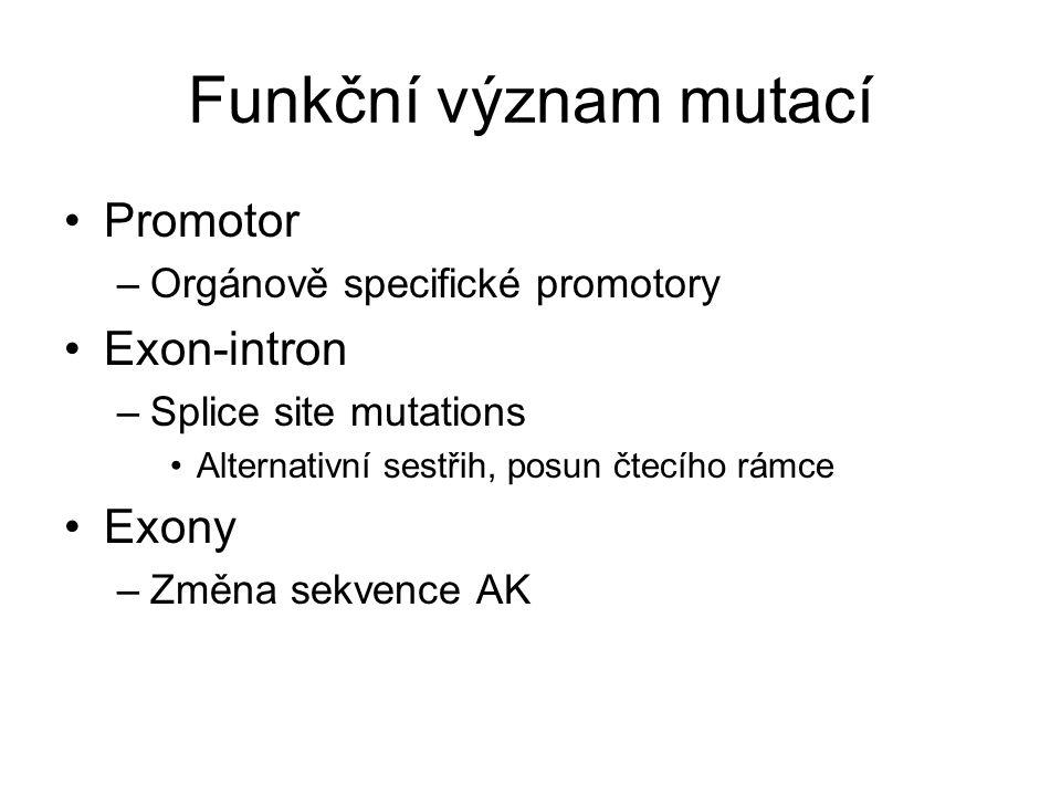Funkční význam mutací Promotor –Orgánově specifické promotory Exon-intron –Splice site mutations Alternativní sestřih, posun čtecího rámce Exony –Změn