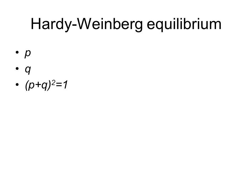 Hardy-Weinberg equilibrium p q (p+q) 2 =1