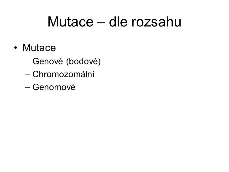 Mutace – dle rozsahu Mutace –Genové (bodové) –Chromozomální –Genomové