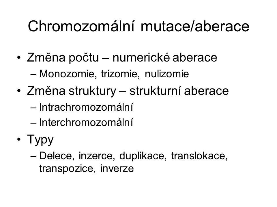 Chromozomální mutace/aberace Změna počtu – numerické aberace –Monozomie, trizomie, nulizomie Změna struktury – strukturní aberace –Intrachromozomální –Interchromozomální Typy –Delece, inzerce, duplikace, translokace, transpozice, inverze