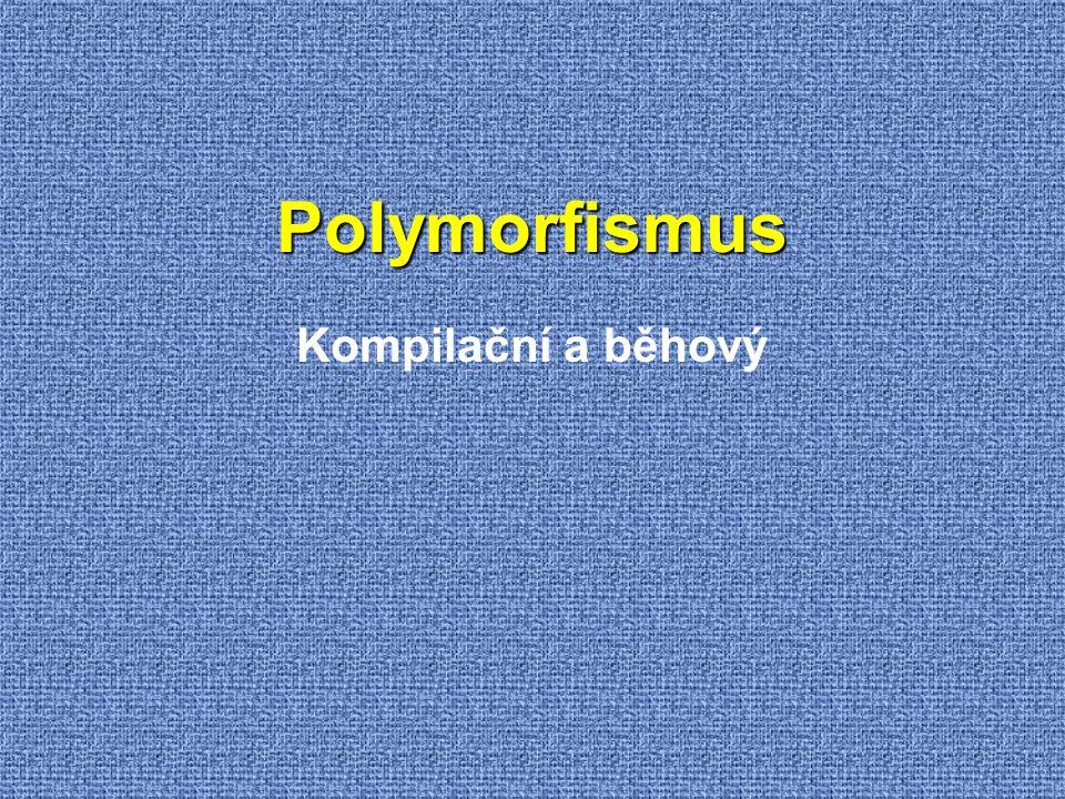Polymorfismus Kompilační a běhový