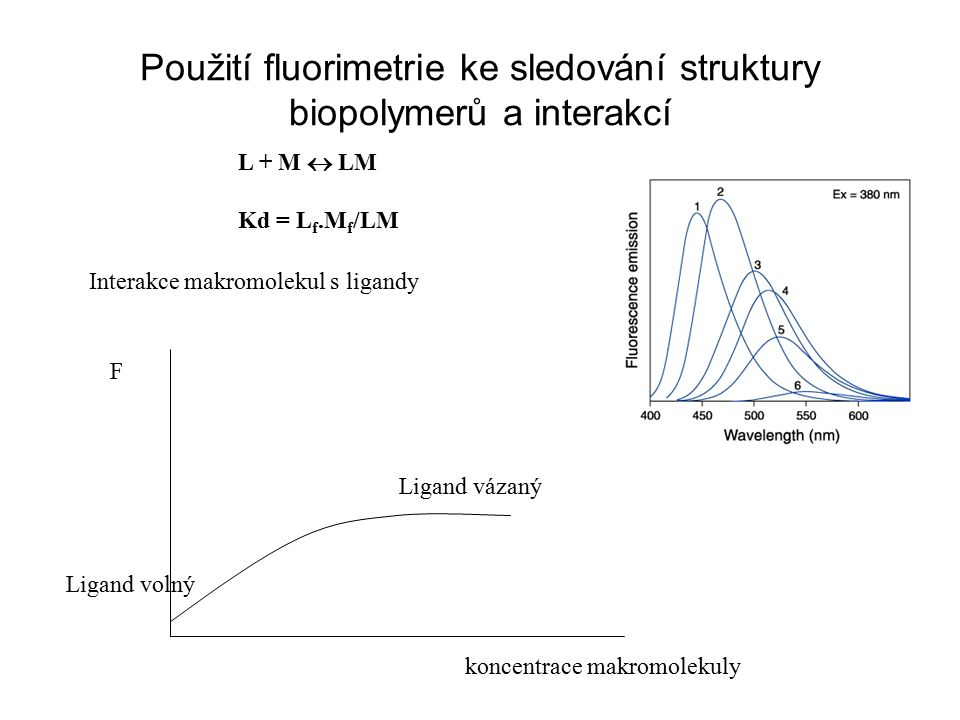 Použití fluorimetrie ke sledování struktury biopolymerů a interakcí Interakce makromolekul s ligandy F koncentrace makromolekuly Ligand volný Ligand v