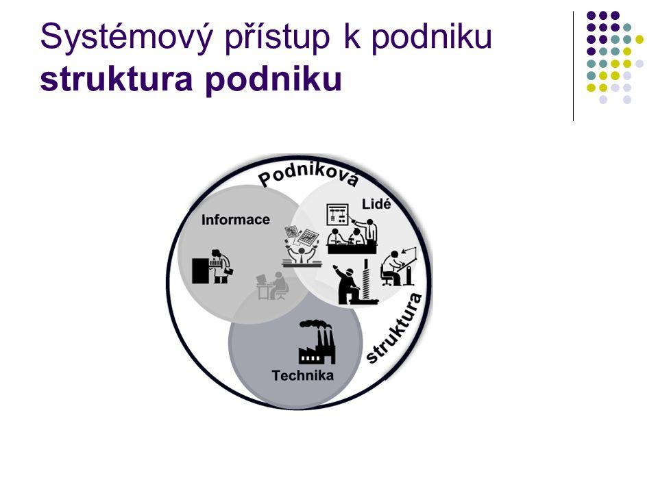 Systémový přístup k podniku struktura podniku