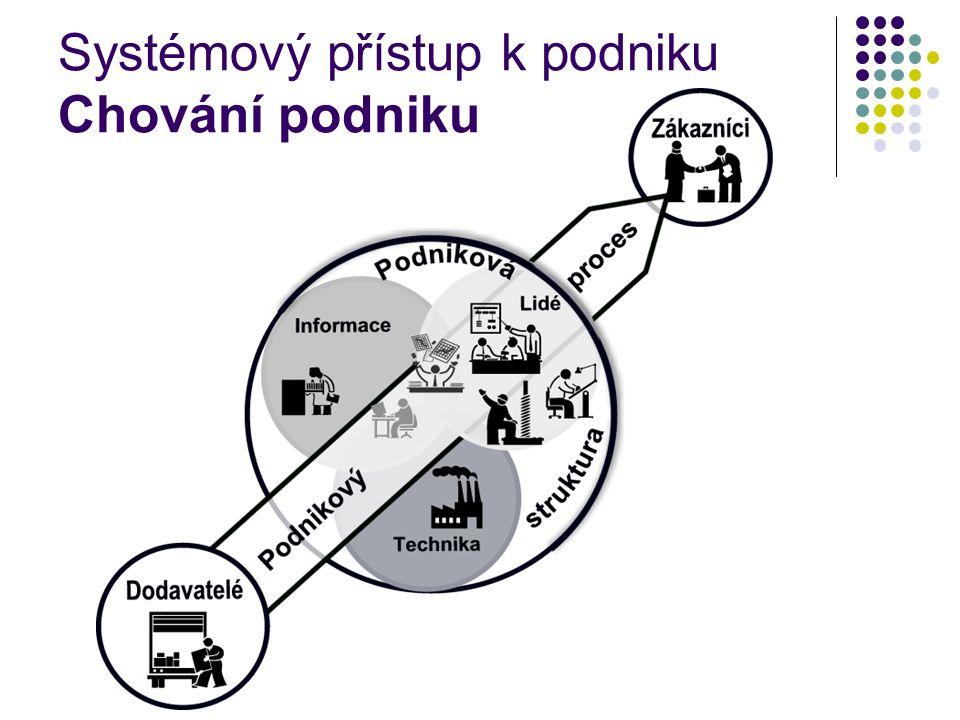 Systémový přístup k podniku Chování podniku