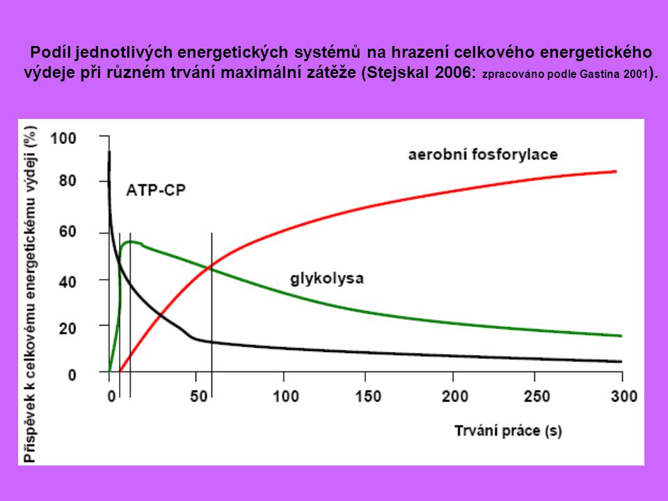 Podíl jednotlivých energetických systémů na hrazení celkového energetického výdeje při různém trvání maximální zátěže (Stejskal 2006: zpracováno podle