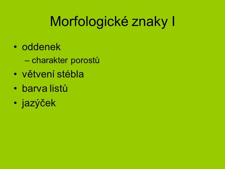Morfologické znaky I oddenek –charakter porostů větvení stébla barva listů jazýček