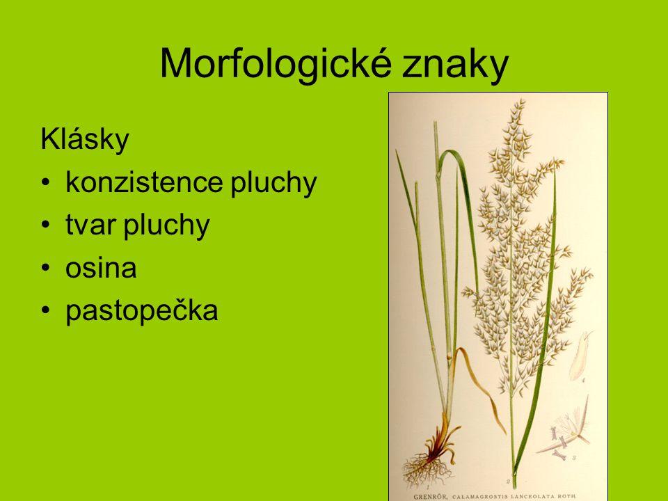 Calamagrostis arundinacea hojně skoro v celé ČR široká ekologická valence lesní biotopy –od dubohabřin po primární smrčiny nelesní biotopy –paseky –lesní lemy –vysokostébelné trávníky nad horní hranicí lesa
